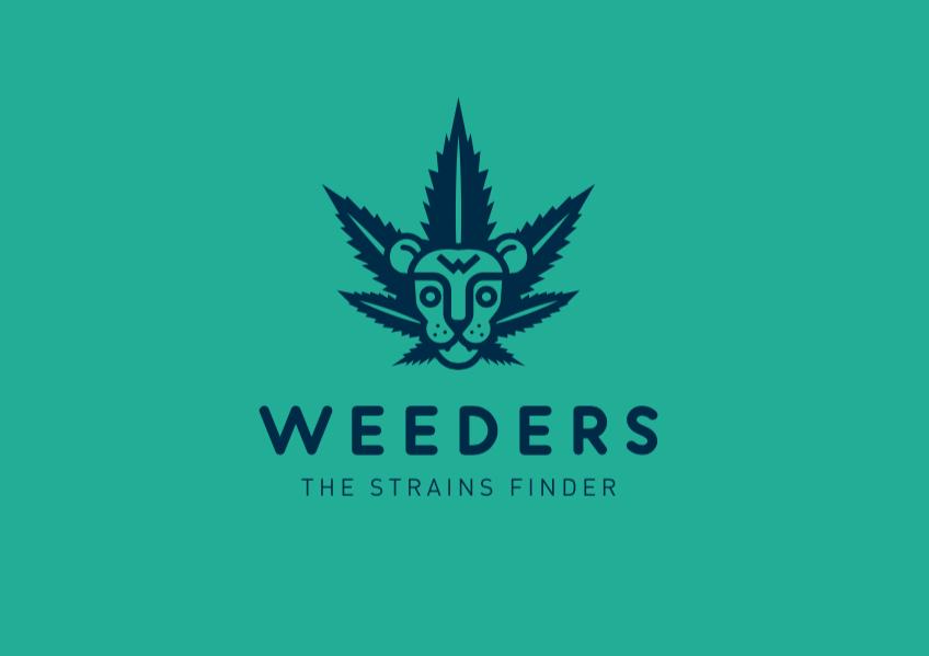 Diseño logo león semillas de marihuana