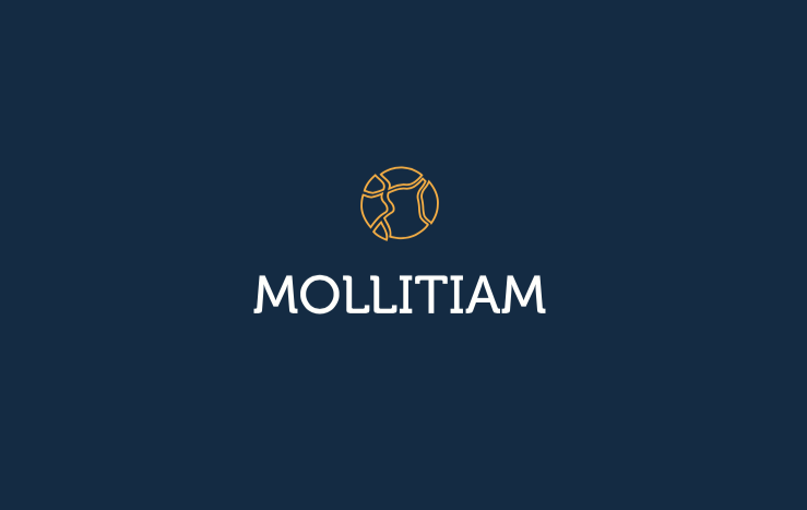 marca joya minimalista