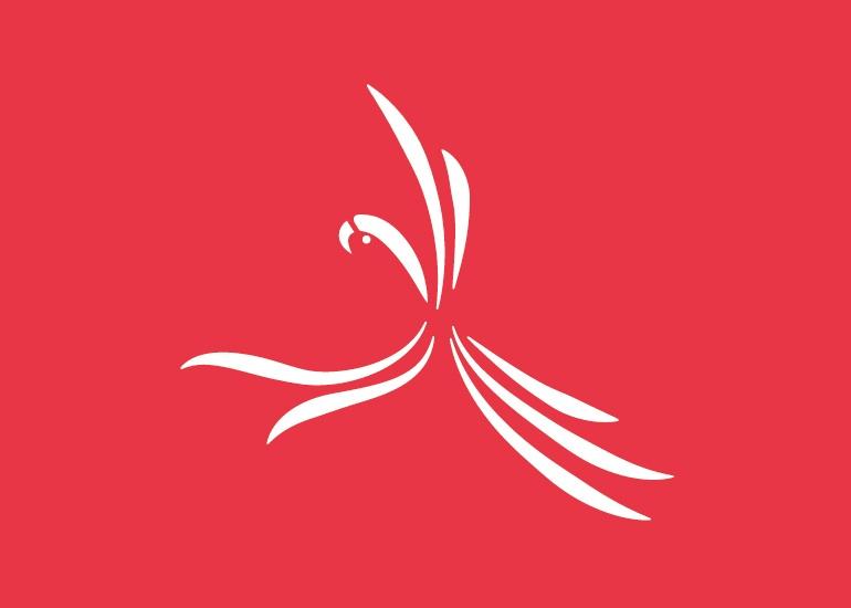 Diseño logo fotos salvajes