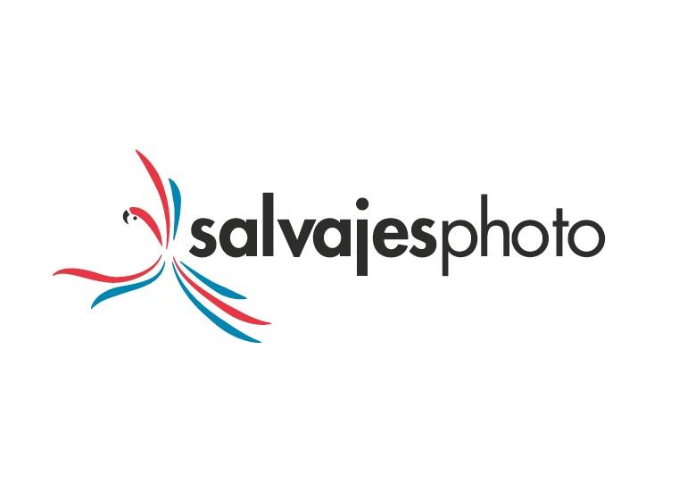 Diseño marca fotografía hobby