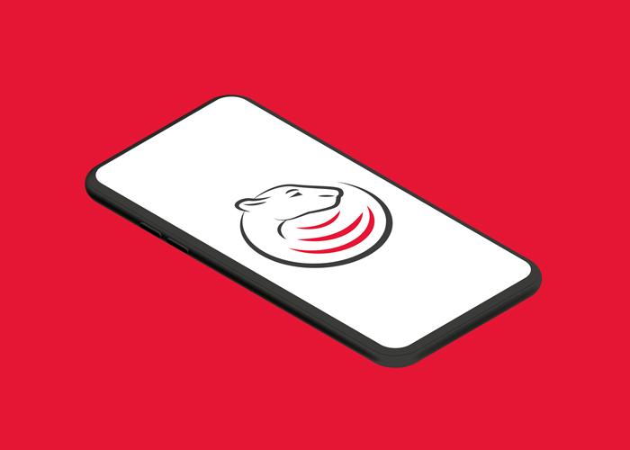 Diseño de logotipo para empresa de ciberseguridad