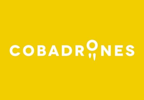 Diseño logo drones