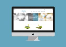 Diseño web wordpress consultoría energética