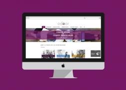 Diseño de web ecommerce academia Málaga