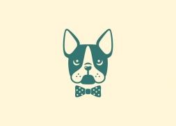 Diseño identidad corporativa boston terrier