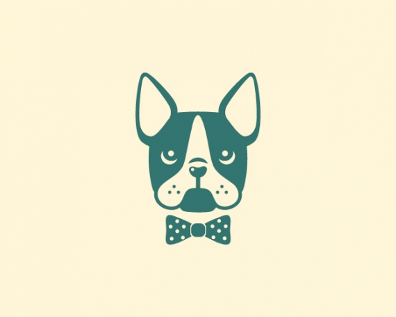 Diseño identidad corporativa boston terrier