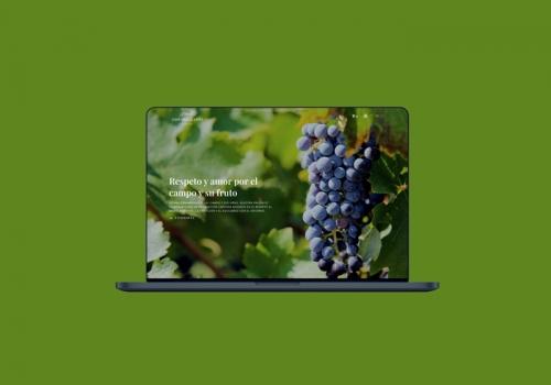Tienda de vinos y web corporativa