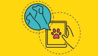 Logotipos tiendas de animales, adiestradores, criadores…