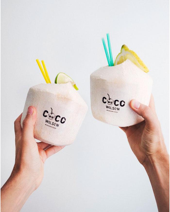 74b0fc578 cocowilson-marca-agua-de-coco  cocowilson-marca-logotipo-bebida-coco  Diseño  de logotipo para empresa ...