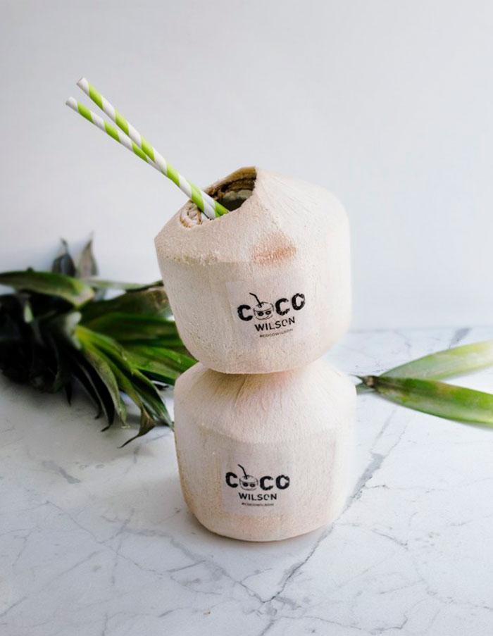 c5c864e52 ... cocowilson-marca-logotipo-bebida-coco  Diseño de logotipo para empresa  ...