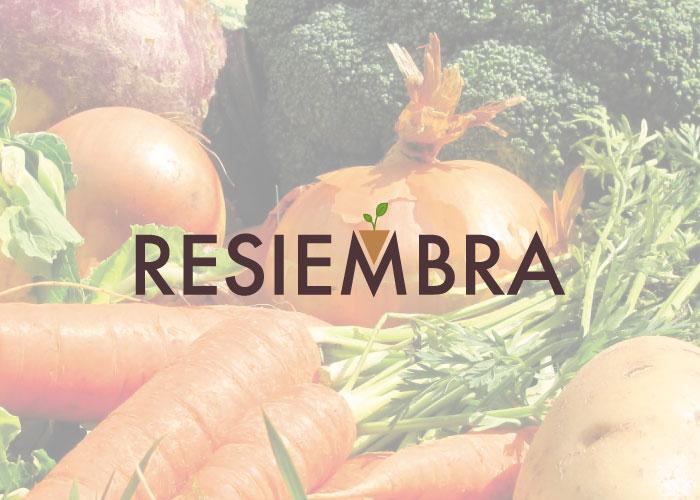 Dise o de logotipo para sector de jardiner a factoryfy - Disenos de jardineria ...