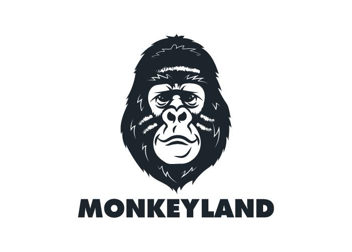 Diseño de logotipo para centro de ocio para niños y adultos con escenarios para láser combat