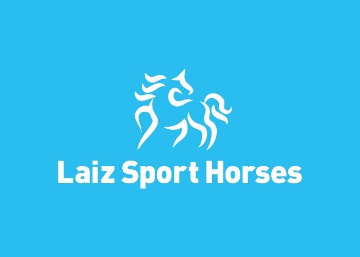 diseno-logotipo-empresa-compraventa-caballos-deportivos