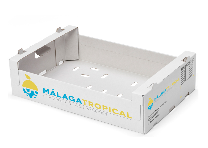 diseno-packaging-caja-fruta-limones-aguacates