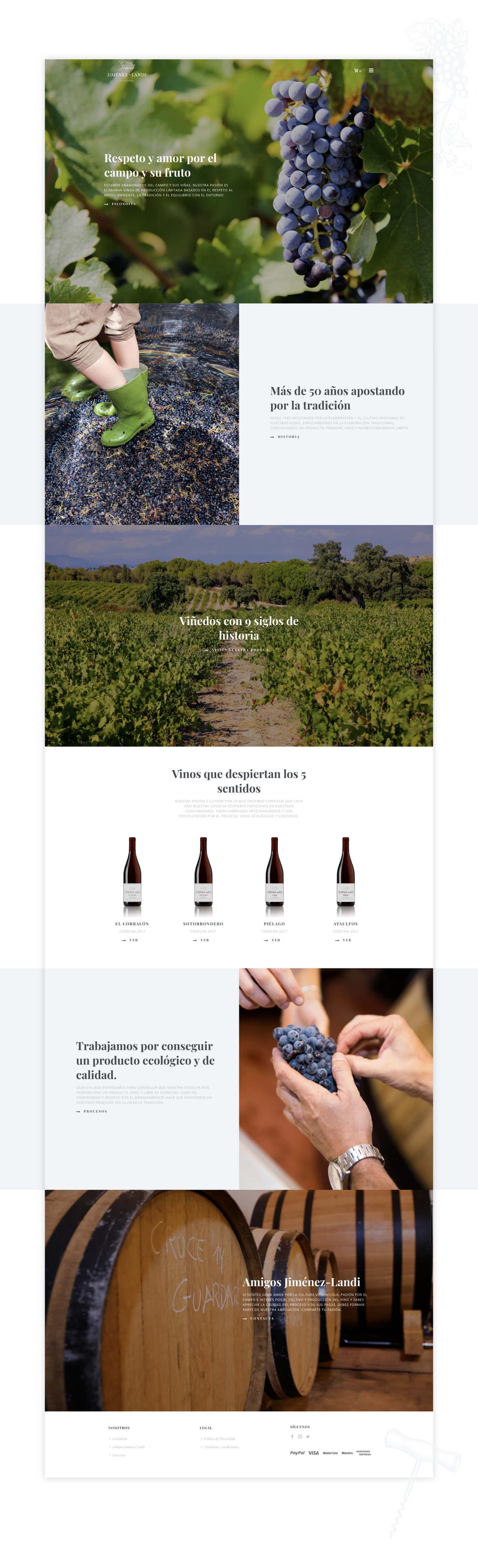 diseno-tienda-online-vinos-ecologicos