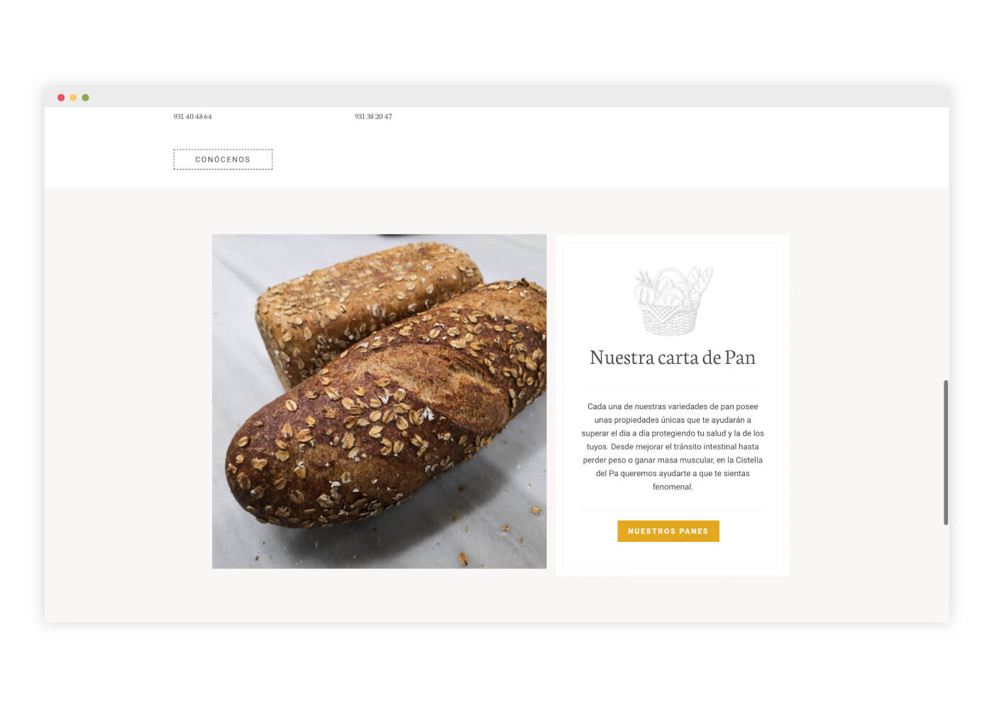 diseno-web-panaderia-ecologica
