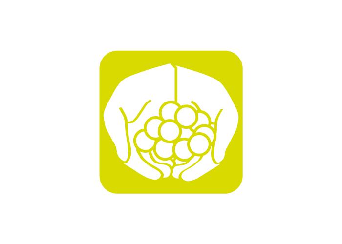 Diseño icono app Australia