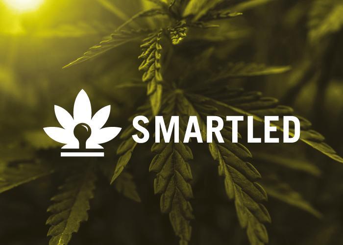 smartled-factoryfy-2
